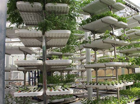 Summit reviews vertical farming. One message: Support ...