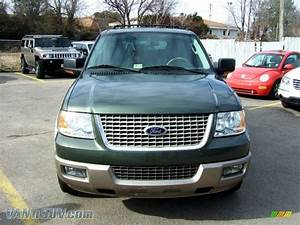 2004 Ford Expedition Eddie Bauer In Aspen Green Metallic