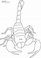 Scorpion Coloring Pages Printable Scorpio Invertebrate Animals Coloringbay sketch template