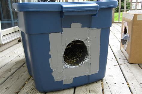 face  cost animal clinicoutdoor cat shelters face