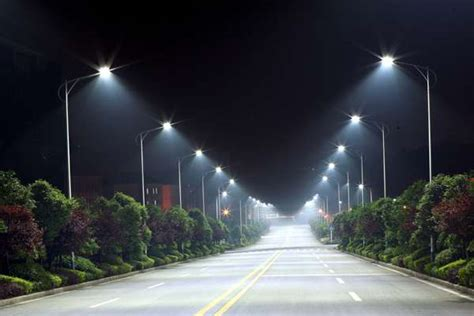led lighting could major impact on wildlife
