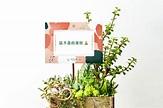 2020 鼠年吉祥話、祝賀詞大集合(成語+諧音梗) | 有肉 Succulent & Gift - 多肉植物與設計盆器搭配的禮品店