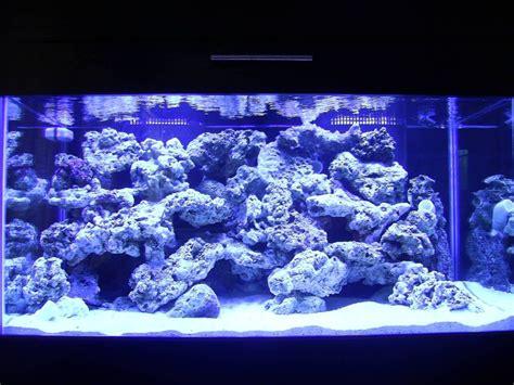 Reef Aquascaping Designs  Your Aquascaping Pics