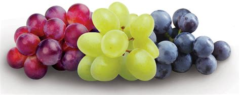 Frozen Yogurt Grapes Snack For Kids Happy Strong Home
