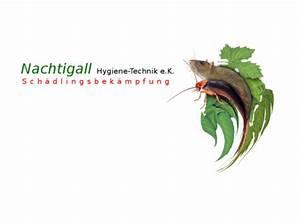 Ameisen Mit Flügel : ameisen bek mpfen solingen nachtigall hygiene technik ~ Buech-reservation.com Haus und Dekorationen
