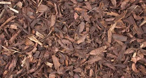 using bark chippings in garden landscape bark bulk garden landscaping mulch ashville aggregates