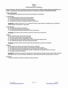 29 Chapter 11 Cell Reproduction Worksheet Answers