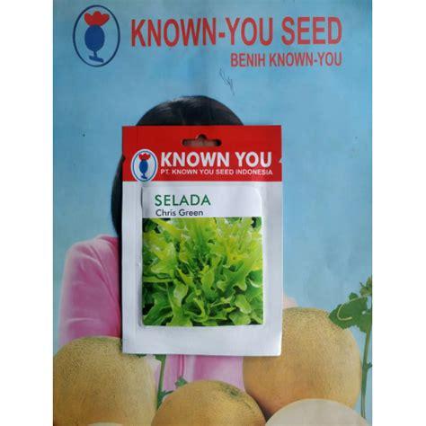 jual lettuce oakleaf chris green hp 085608566034