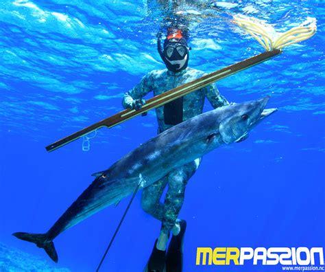 mer le sp 233 cialiste de la plong 233 e et de la chasse sous marine nouvelle cal 233 donie