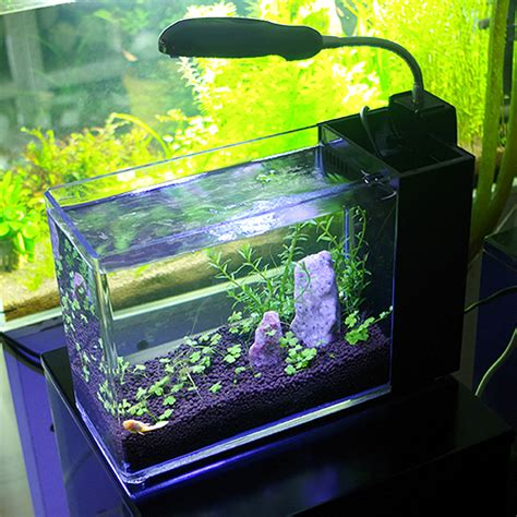 cool fish tanks on sale cheap funtrublog awesome aquariums 5 cool modern fish tank designs