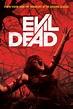 Evil Dead DVD Release Date   Redbox, Netflix, iTunes, Amazon