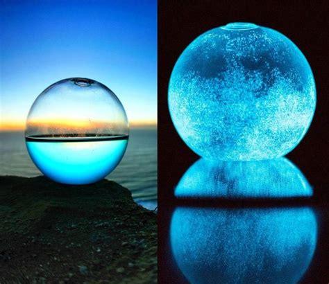 Cool Product Alert Bioluminescent Marine Algae Aquarium by 1000 Images About Bioluminescent On Fireflies