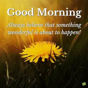 Wake up & Seize... Beautiful Morning Wish Quotes