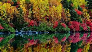 Autumn, River, Reflection, Leaves, Trees, Foliage, Purple