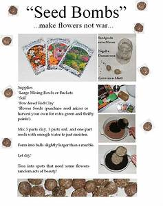 Instructions For Making Seed Bombs
