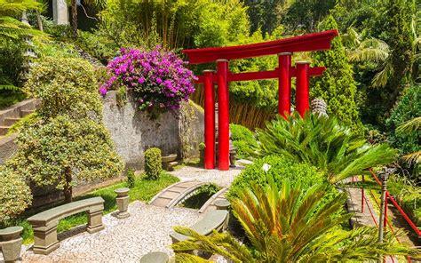 Japanese Style Garden by Design Ideas For A Japanese Garden David Domoney
