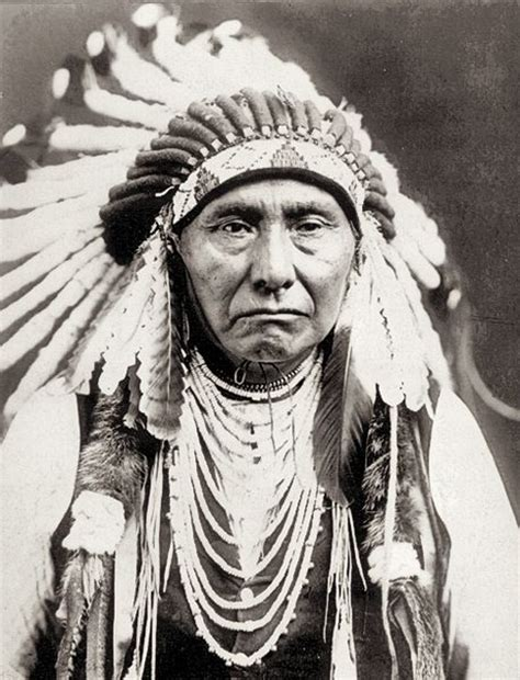 Indian Chief Image by Nez Perce In Yellowstone On The Trail From Big To