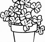 Coloring Pages Bamboo Plant Printable Getcolorings Getdrawings sketch template