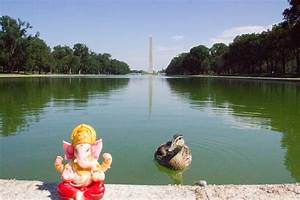 30 cosas gratis que hacer en Washington D.C. Parte I