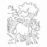 Coloring Bullock Pages Cart Bull Matador Printable Getcolorings Designlooter sketch template