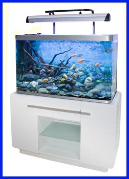 meuble aquarium occasion le bon coin