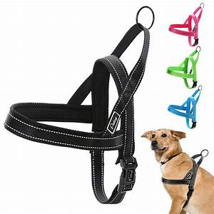 Reflective Nylon Dog Harness No Pull Quick Fit For Small
