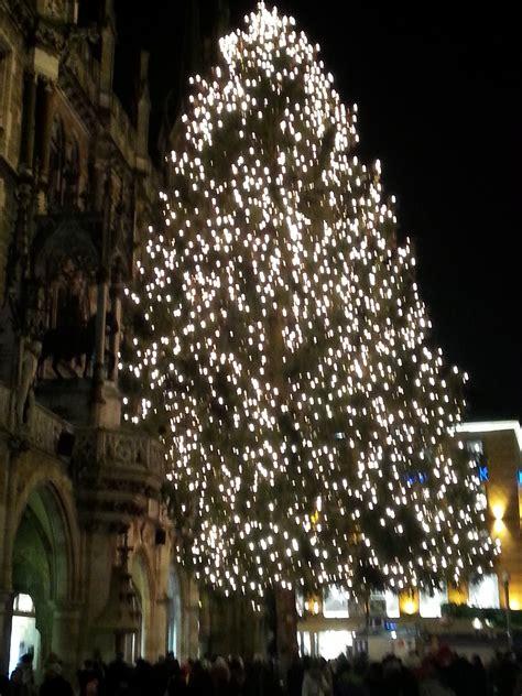 wo kommt der weihnachtsbaum her my blog