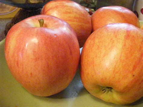 Apples Free Stock Photo  Public Domain Pictures