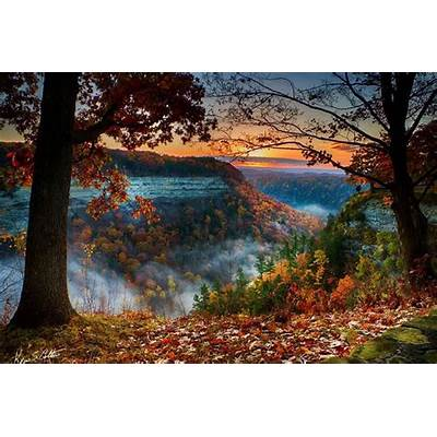 Letchworth State Park: Buffalo Attractions Review - 10Best