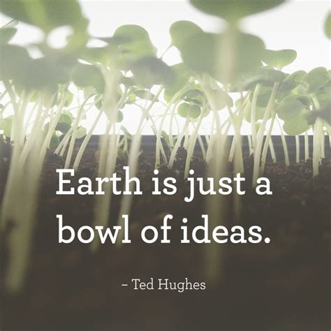 Edward james ted hughes, omwas an english poet and children's writer. Ted Hughes Quote - Earth