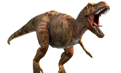 dur du si e d al ia dinosauri replicati in alta qualita 39 grazie alla sta 3d