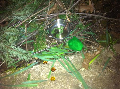 Leprechaun Traps Are Baited With Honey Sincewewerethree