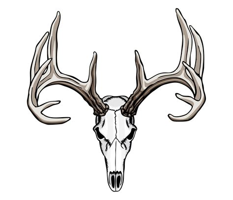 whitetail deer skull tattoos art nouveau pinterest