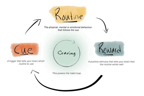 how habits are formed in the brain the habit loop how to start new habits that actually