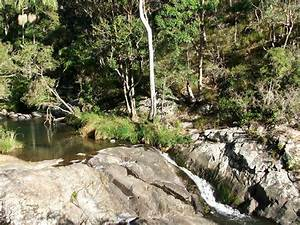 Cedar Creek Falls - Aussie Bushwalking
