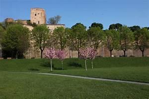 Santarcangelo di Romagna Riviera di Rimini