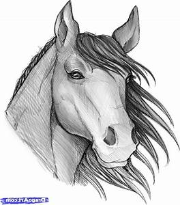 Easy Horse Drawings In Pencil Step By Step - Drawing Of Sketch