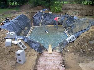 backyard swimming pool landscaping ideas of design With swimming pools design and construction