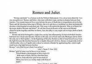 Proposal Essay Template Blame For Romeo And Juliets Death Essay Argumentative Essay Thesis Example also Argumentative Essay Thesis Romeo And Juliet Death Essay Milton Keynes Partnership Business Plan  Science And Literature Essay
