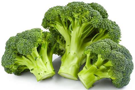 cuisiner le brocoli tout savoir sur le brocolis le choisir le cuisiner le