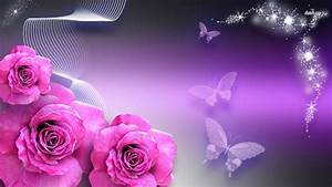 Purple And Black Butterfly Wallpapers | Hd Wallpaper ...