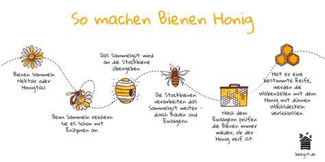 wie wird honig gemacht wie entsteht honig so wird er gemacht einfach erkl 228 rt beegut de