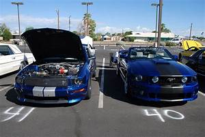 All Ford Show at my dealer - The Mustang Source - Ford Mustang Forums