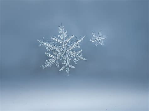 Wallpaper Snowflakes by Beautiful Snowflakes Wallpapers High Quality Free