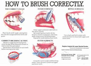 It U0026 39 S Time To Talk Toothbrushes  U2026 How To Brush