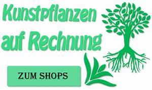 Erotik Auf Rechnung : kunstpflanzen auf rechnung bestellen ~ Themetempest.com Abrechnung