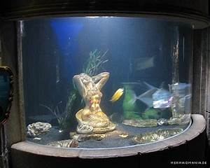 Aquarium Deko Set : penn plax 8274 arielle die meerjungfrau 5 er set bunte ~ Frokenaadalensverden.com Haus und Dekorationen