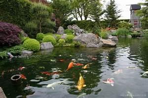 Algen Im Teich Entfernen : fadenalgen im koiteich algen im koiteich algen im teich bek mpfen algenbek mpfung doovi ~ Orissabook.com Haus und Dekorationen