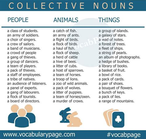 collective nouns collective nouns collective nouns english grammar english grammar