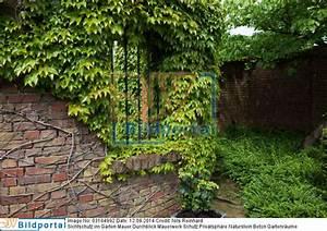 Sichtschutz Mauer Naturstein : details zu 0003184992 sichtschutz im garten mauer ~ Michelbontemps.com Haus und Dekorationen